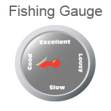 Fishing Report Gauge Good