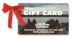 Little River Outfitters Gift Card and a Red Bow